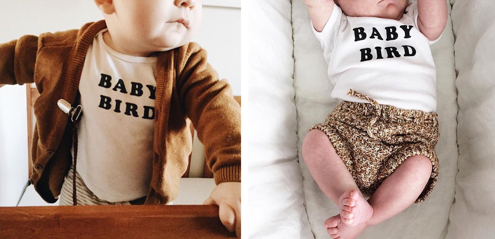 dp-blog-interview-thefoxandthebee-baby-bird